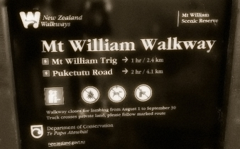Mt William