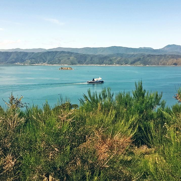 Blue Bridge ferry heading South