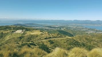 View into Wellington