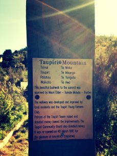 Taupiri9